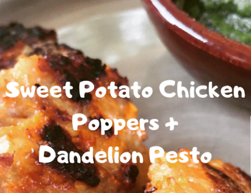 Lander Chiropractic Weekly Recipe (8/26/19): Sweet Potato & Chicken Poppers with